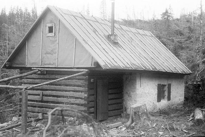 Smogorniak na przerażającym wiatrołomie (IX-1967)