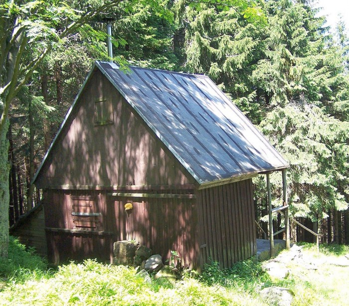 Chatka Noworoczna wśród wysokich drzew (VII-2011)